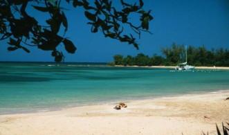 < Las 5 del viernes VI - La playa >